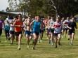 http://www.kemblajoggers.org.au/uploads/353/2012kembalajoggersrace15-13.jpg