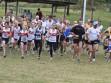 http://www.kemblajoggers.org.au/uploads/291/2012kjrace7-162.jpg