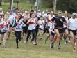 http://www.kemblajoggers.org.au/uploads/291/2012kjrace7-165.jpg
