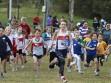 http://www.kemblajoggers.org.au/uploads/291/2012kjrace7-48.jpg