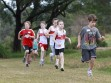 http://www.kemblajoggers.org.au/uploads/323/kemblajoggersrace11-26.jpg