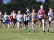 http://www.kemblajoggers.org.au/uploads/323/kemblajoggersrace11-71.jpg