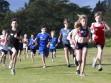 http://www.kemblajoggers.org.au/uploads/323/kemblajoggersrace11-76.jpg