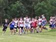 http://www.kemblajoggers.org.au/uploads/245/kjrace4-39.jpg