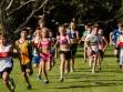 http://www.kemblajoggers.org.au/uploads/629/race9summer2013-9.jpg