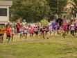 http://www.kemblajoggers.org.au/uploads/740/summer2014_15_race2-11.jpg