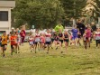 http://www.kemblajoggers.org.au/uploads/740/summer2014_15_race2-12.jpg