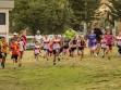 http://www.kemblajoggers.org.au/uploads/740/summer2014_15_race2-13.jpg