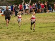 http://www.kemblajoggers.org.au/uploads/740/summer2014_15_race2-132.jpg