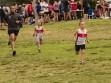 http://www.kemblajoggers.org.au/uploads/740/summer2014_15_race2-134.jpg