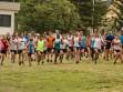 http://www.kemblajoggers.org.au/uploads/740/summer2014_15_race2-145.jpg