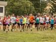 http://www.kemblajoggers.org.au/uploads/740/summer2014_15_race2-149.jpg