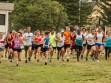 http://www.kemblajoggers.org.au/uploads/740/summer2014_15_race2-150.jpg