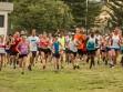 http://www.kemblajoggers.org.au/uploads/740/summer2014_15_race2-151.jpg