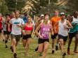 http://www.kemblajoggers.org.au/uploads/740/summer2014_15_race2-159.jpg