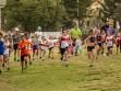 http://www.kemblajoggers.org.au/uploads/740/summer2014_15_race2-16.jpg