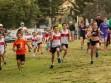 http://www.kemblajoggers.org.au/uploads/740/summer2014_15_race2-19.jpg