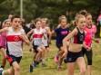 http://www.kemblajoggers.org.au/uploads/740/summer2014_15_race2-26.jpg