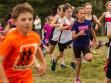 http://www.kemblajoggers.org.au/uploads/740/summer2014_15_race2-28.jpg