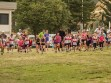 http://www.kemblajoggers.org.au/uploads/740/summer2014_15_race2-5.jpg