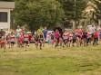http://www.kemblajoggers.org.au/uploads/740/summer2014_15_race2-6.jpg
