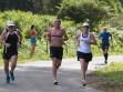 http://www.kemblajoggers.org.au/uploads/764/summer2014_15_race7-125.jpg