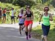 http://www.kemblajoggers.org.au/uploads/764/summer2014_15_race7-162.jpg