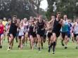 http://www.kemblajoggers.org.au/uploads/774/summer2014_15_race8-10-85.jpg