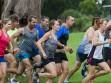 http://www.kemblajoggers.org.au/uploads/774/summer2014_15_race8-10-92.jpg