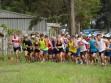 http://www.kemblajoggers.org.au/uploads/771/summer2014_15_race8-115.jpg