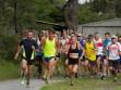 http://www.kemblajoggers.org.au/uploads/771/summer2014_15_race8-123.jpg