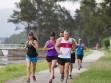 http://www.kemblajoggers.org.au/uploads/771/summer2014_15_race8-201.jpg